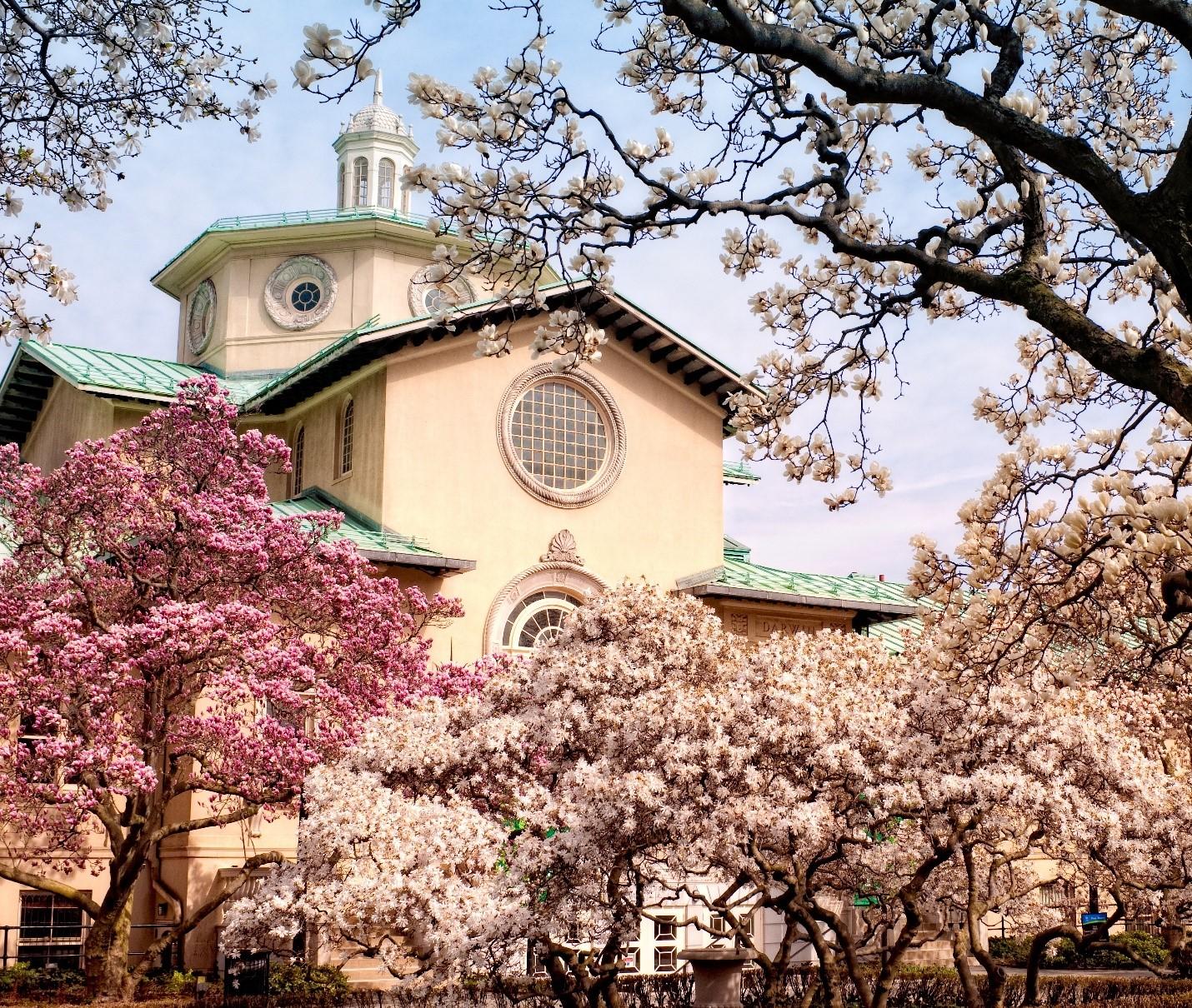 Brooklyn Botanic Garden - Marlboro Free Library